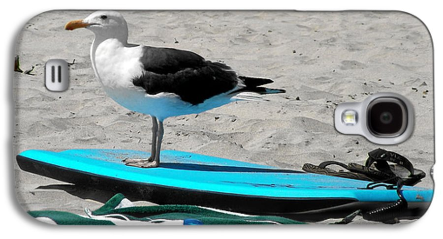 Bird Galaxy S4 Case featuring the photograph Seagull On A Surfboard by Christine Till