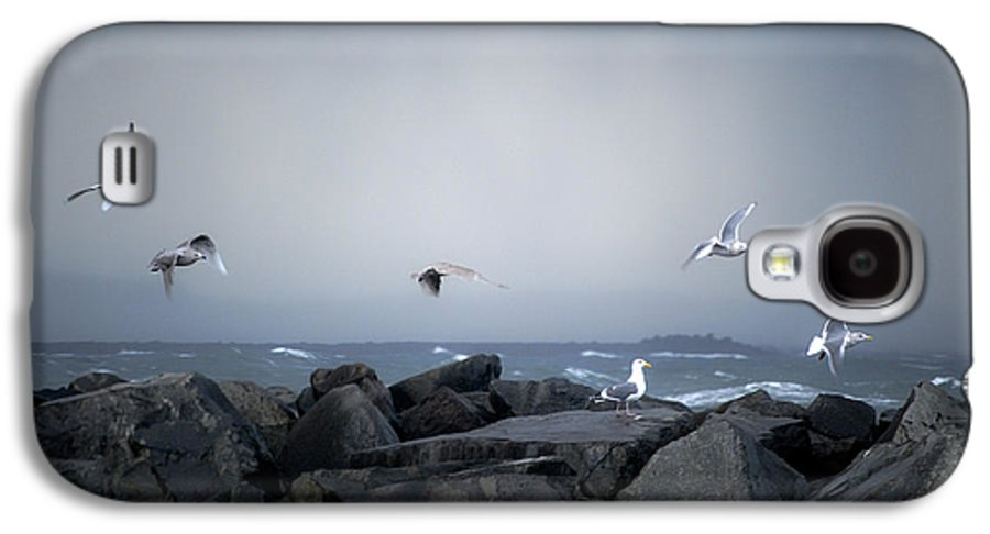 Landscape Galaxy S4 Case featuring the photograph Seagulls In Flight by Larry Keahey