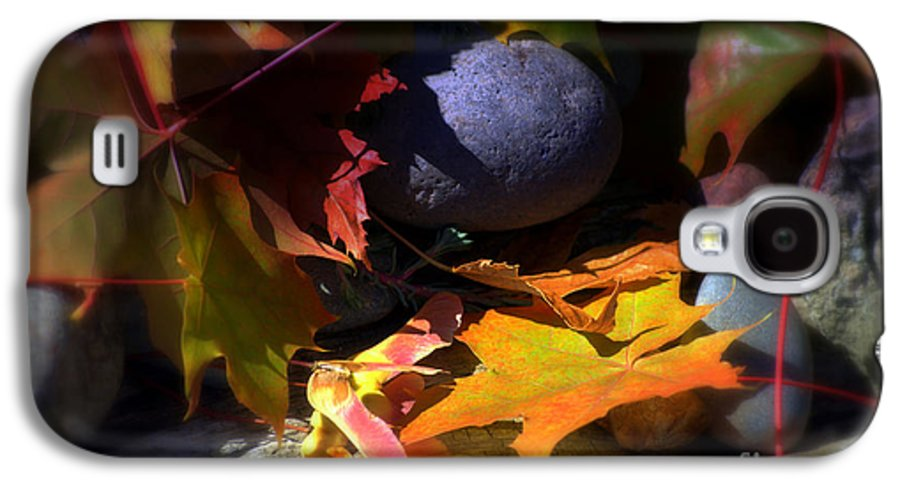 Leaves Galaxy S4 Case featuring the photograph Seed by Larry Keahey