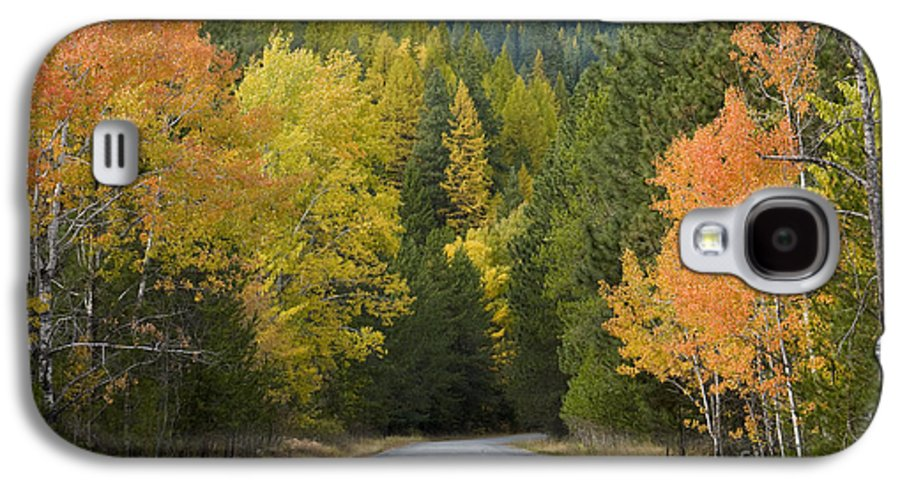 Trees Galaxy S4 Case featuring the photograph Selkirk Color by Idaho Scenic Images Linda Lantzy