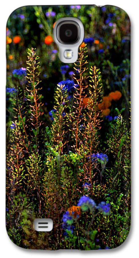 Flowers Galaxy S4 Case featuring the photograph Shimmers by Randy Oberg