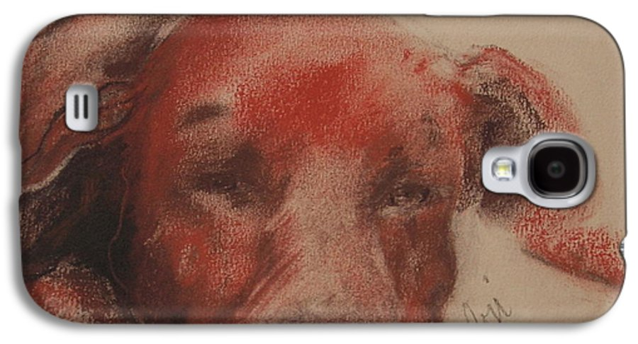Pastel Galaxy S4 Case featuring the drawing Soul Searcher by Cori Solomon