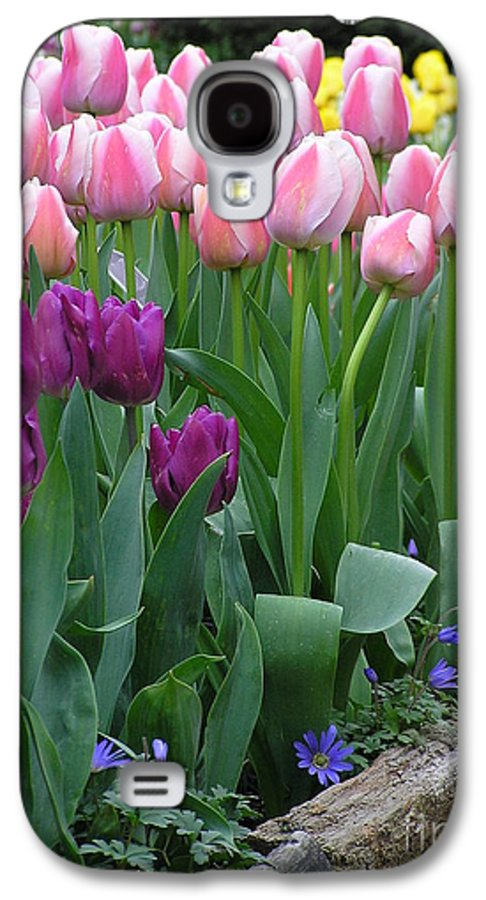 Tulips Galaxy S4 Case featuring the photograph Spring Colors by Louise Magno