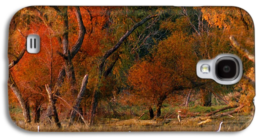 Landscape Galaxy S4 Case featuring the photograph Squaw Creek Egrets by Steve Karol