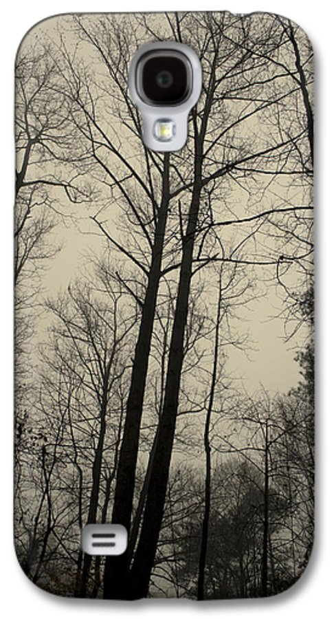 Trees Galaxy S4 Case featuring the photograph Standing Tall by Ayesha Lakes
