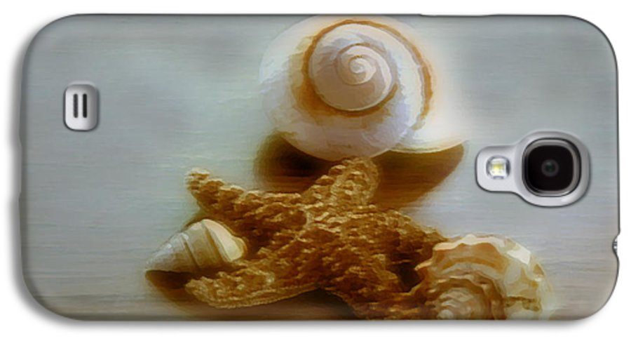 Beach Art Galaxy S4 Case featuring the photograph Star And Shells by Linda Sannuti