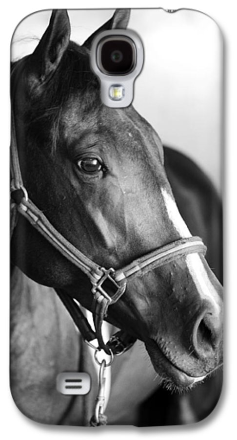 Horse Galaxy S4 Case featuring the photograph Horse And Stillness by Marilyn Hunt