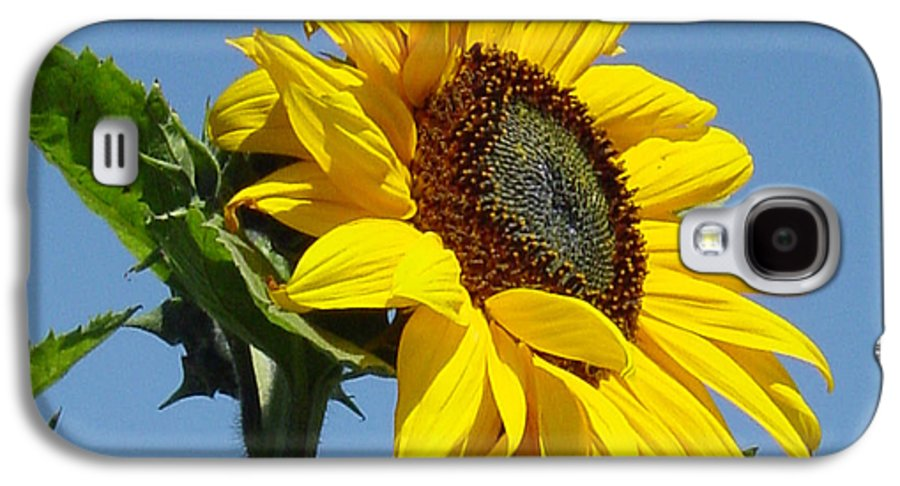 Sunflower Galaxy S4 Case featuring the photograph Sun Goddess by Suzanne Gaff
