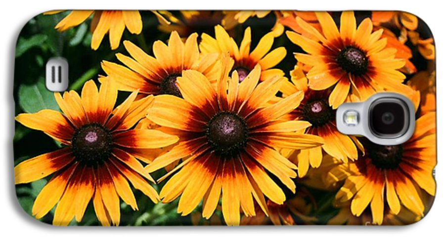 Sunflowers Galaxy S4 Case featuring the photograph Sunflowers by Dean Triolo