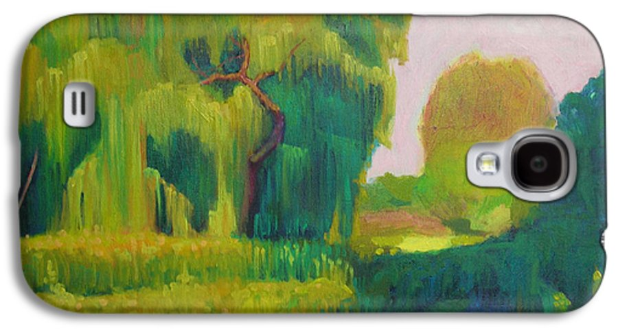 Landscape Galaxy S4 Case featuring the painting Sunny Day Indian Boundary Park by David Dozier