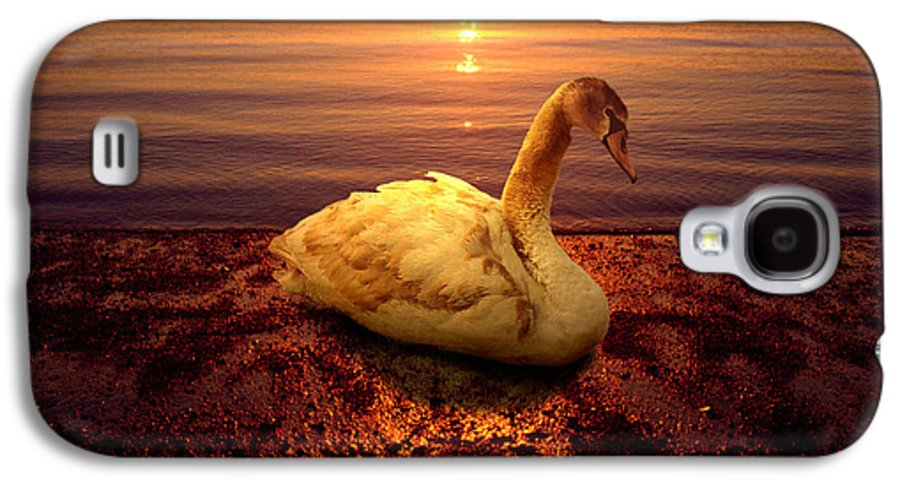 Animal Galaxy S4 Case featuring the photograph Swan Lake by Yuri Lev