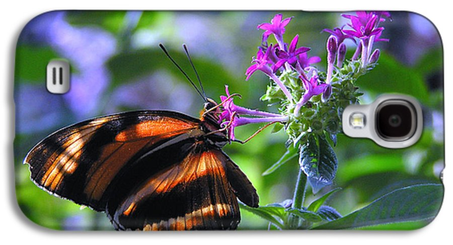 Butterfly Galaxy S4 Case featuring the photograph Sweet Nector by Louise Magno