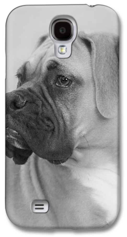 Boxer Dog Galaxy S4 Case featuring the photograph The Boxer Dog - The Gentleman Amongst Dogs by Christine Till