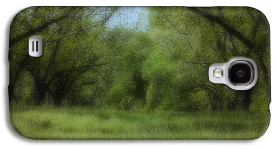 Landscape Galaxy S4 Case featuring the photograph The Meadow by Ayesha Lakes
