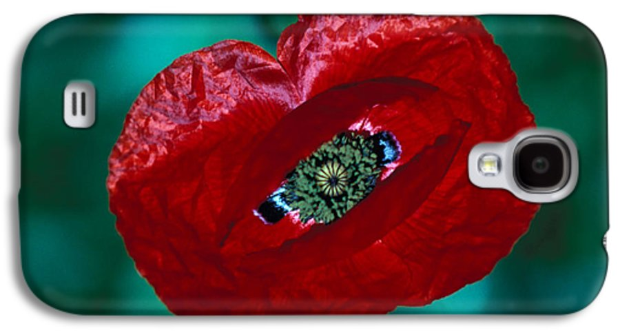 Bright; Red; Green; Brilliant; Flower; Flora; Close-up; Eye; Nature; Opium; Sleep; Death; Hypnotic; Magic; Wizard; Dorothy; France Galaxy S4 Case featuring the photograph The Opiate Of Desire by Carl Purcell