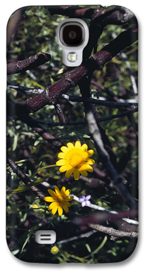 Flower Galaxy S4 Case featuring the photograph The Prisoner by Randy Oberg