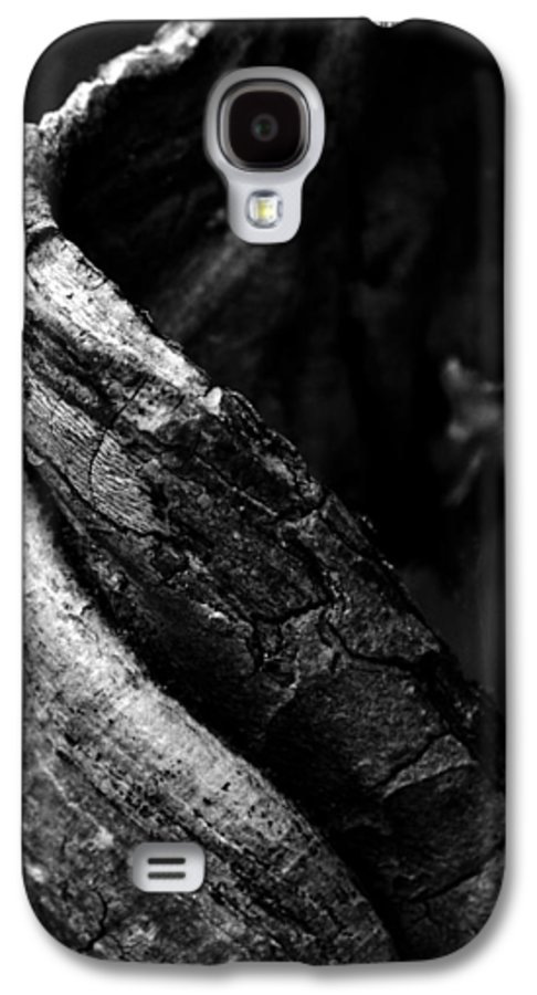 Tree Galaxy S4 Case featuring the photograph Themselves Alone by Rebecca Sherman