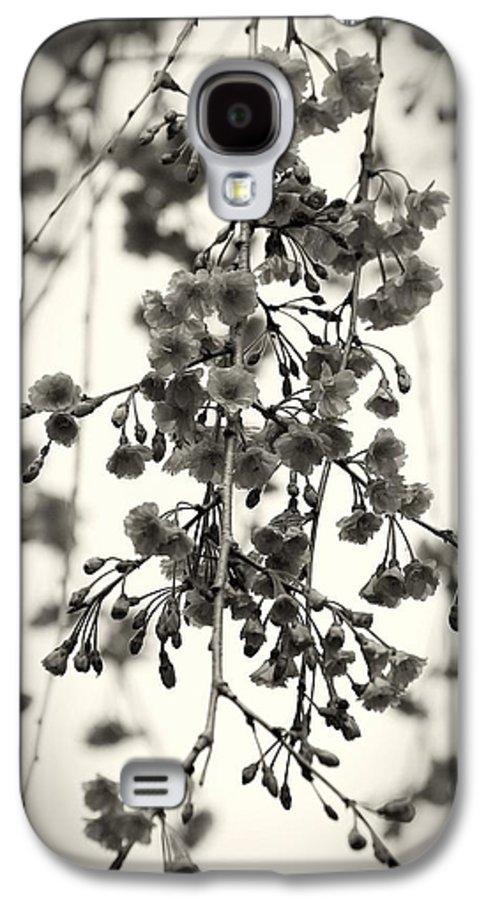 Black And White Galaxy S4 Case featuring the photograph Tiny Buds And Blooms by Angie Tirado
