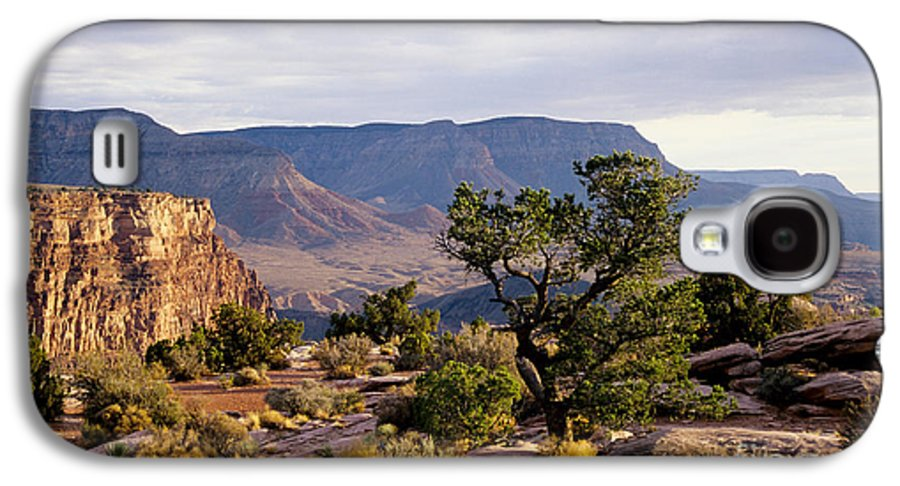 Arizona Galaxy S4 Case featuring the photograph Toroweap by Kathy McClure