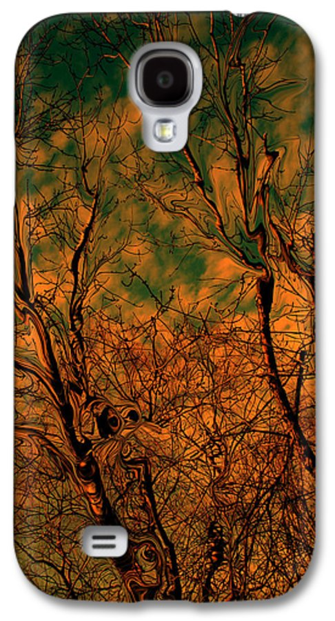 Trees Galaxy S4 Case featuring the photograph Tree Abstract by Linda Sannuti