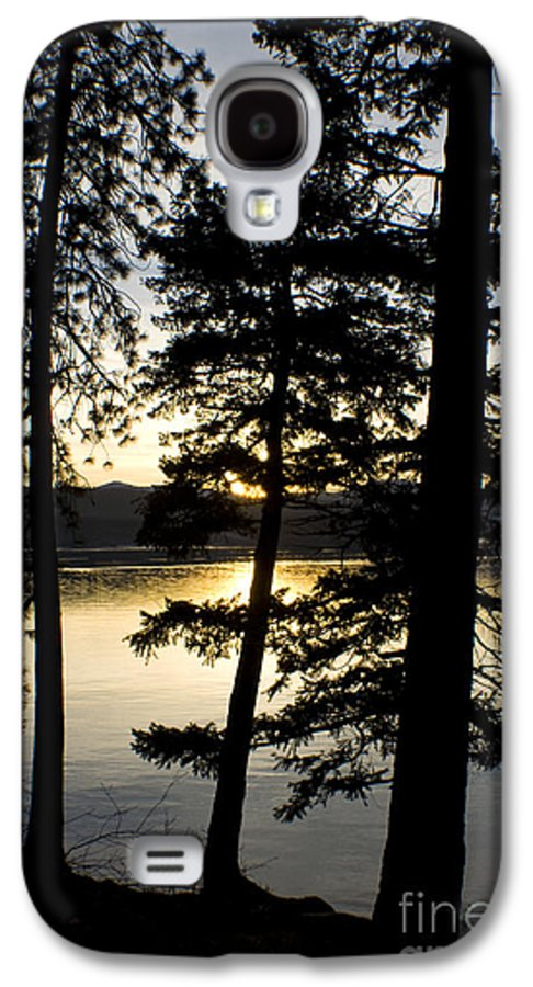 Trees Galaxy S4 Case featuring the photograph Trees By The Lake by Idaho Scenic Images Linda Lantzy