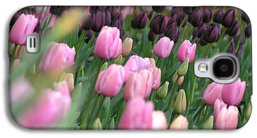 Tulips Galaxy S4 Case featuring the photograph Tulip Dreams by Louise Magno