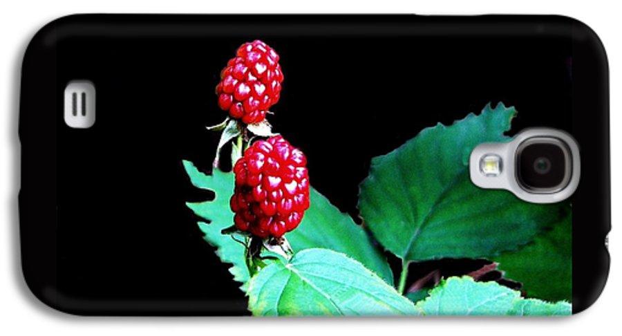 Black Berries Galaxy S4 Case featuring the digital art Unripe Blackberries by Kenna Westerman