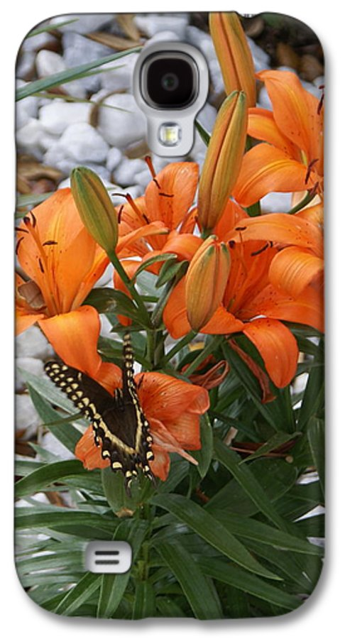 Flower Galaxy S4 Case featuring the photograph Untitled by Debbie May