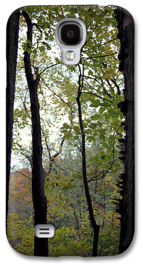 Tree Galaxy S4 Case featuring the photograph Vertical Limits by Randy Oberg