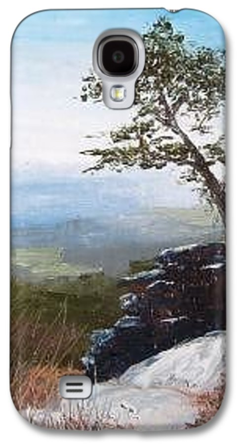 Landscape / Nature / Blue Ridge Mountains Galaxy S4 Case featuring the painting View From Pilot Mountain by Tami Booher