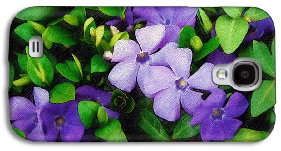 Vinca Galaxy S4 Case featuring the photograph Vinca by Sandy MacGowan