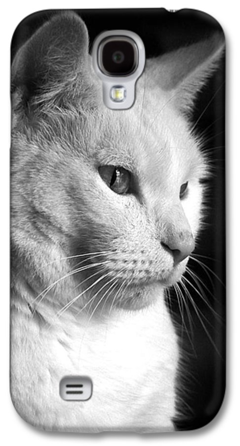 Nature Galaxy S4 Case featuring the photograph Watchful by Bob Orsillo