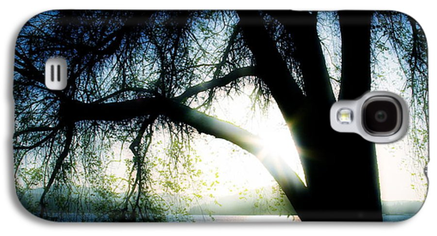 Weesping Galaxy S4 Case featuring the photograph Weeping by Idaho Scenic Images Linda Lantzy