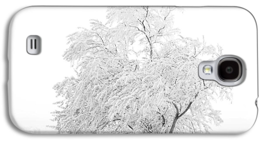 Snow Galaxy S4 Case featuring the photograph White On White by Marilyn Hunt