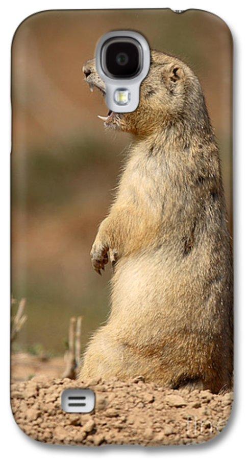 Prairie Dog Galaxy S4 Case featuring the photograph White-tailed Prairie Dog Giving A Fierce Bark by Max Allen