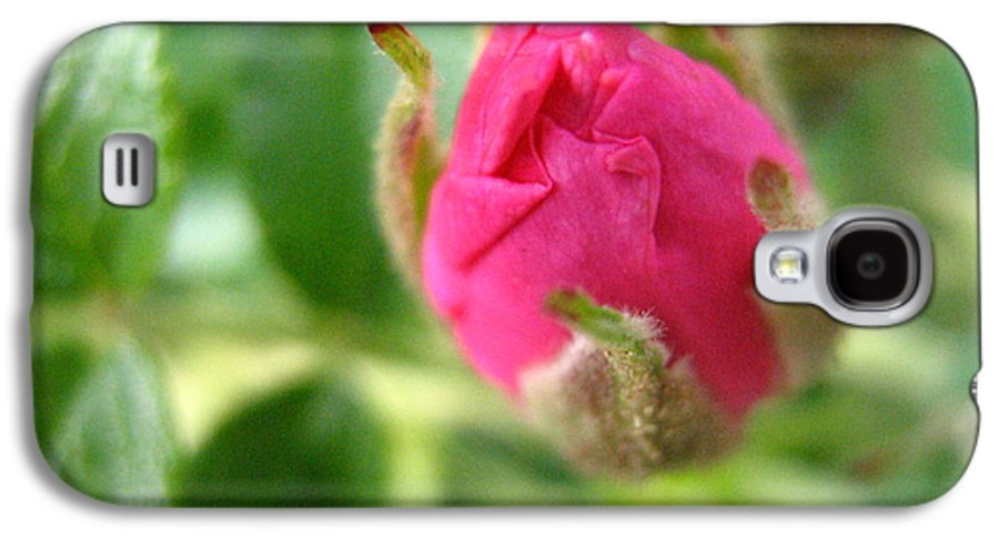 Rose Galaxy S4 Case featuring the photograph Wild Rose Bud by Melissa Parks