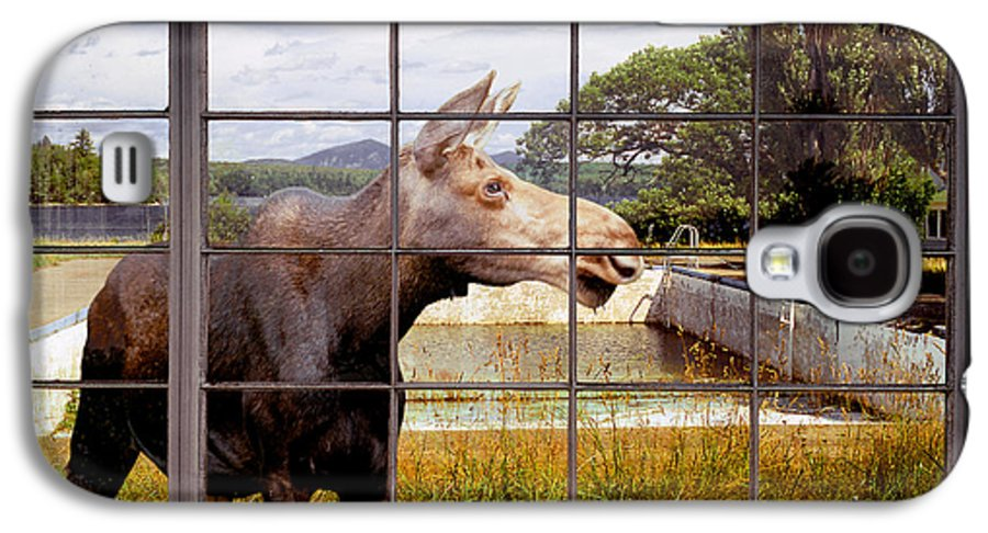 Moose Galaxy S4 Case featuring the photograph Window - Moosehead Lake by Peter J Sucy