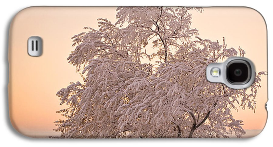 Winter Galaxy S4 Case featuring the photograph Winter Sunset by Marilyn Hunt