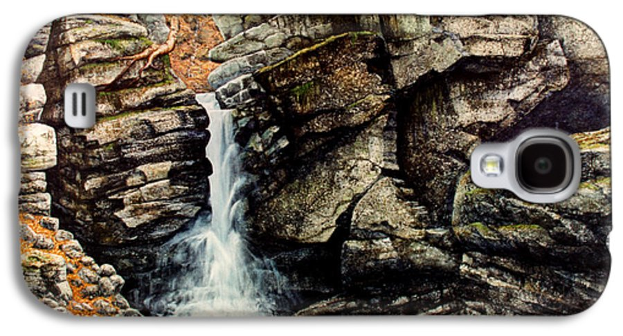 Waterfall Galaxy S4 Case featuring the painting Woodland Falls by Frank Wilson