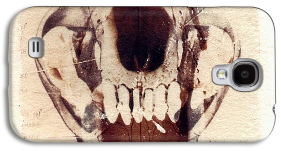 Polaroid Galaxy S4 Case featuring the photograph X Ray Terrestrial by Jane Linders