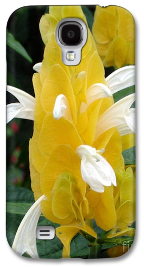 Flower Galaxy S4 Case featuring the photograph Yellow Eruption by Shelley Jones