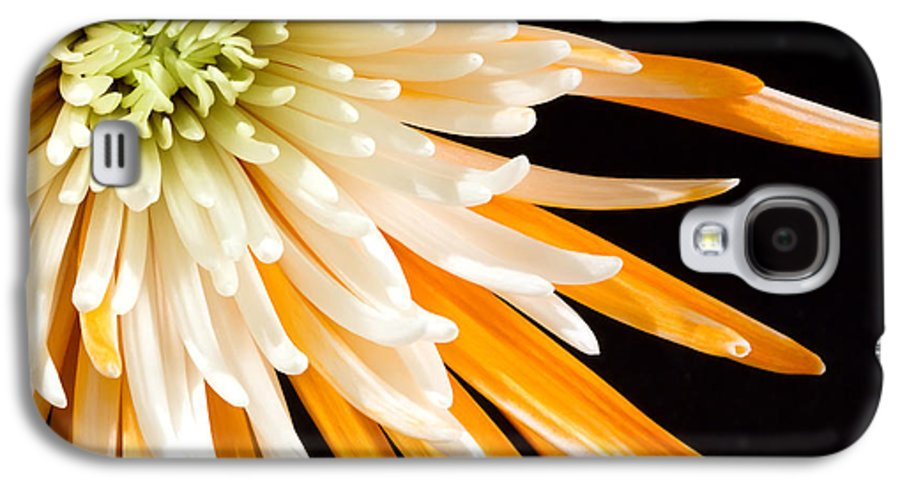 Flower Galaxy S4 Case featuring the photograph Yellow Flower On Black by Al Mueller