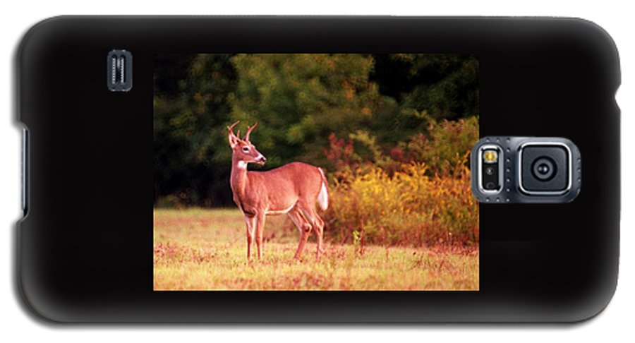 Deer Galaxy S5 Case featuring the photograph 070406-58 by Mike Davis