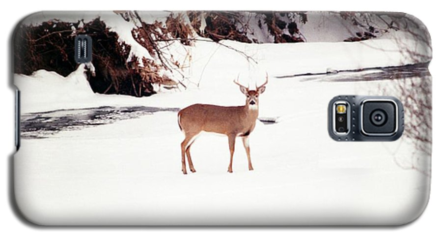 Whitetail Deer Galaxy S5 Case featuring the photograph 080706-89 by Mike Davis