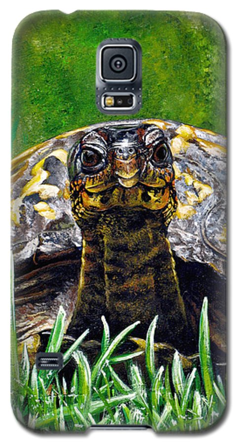 Turtle Galaxy S5 Case featuring the painting Smile by Cara Bevan