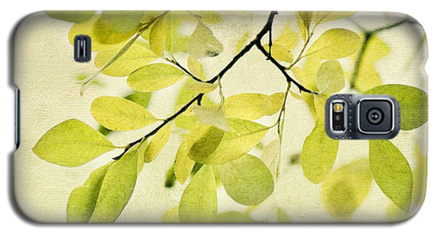 Foliage Galaxy S5 Case featuring the photograph Green Foliage Series by Priska Wettstein