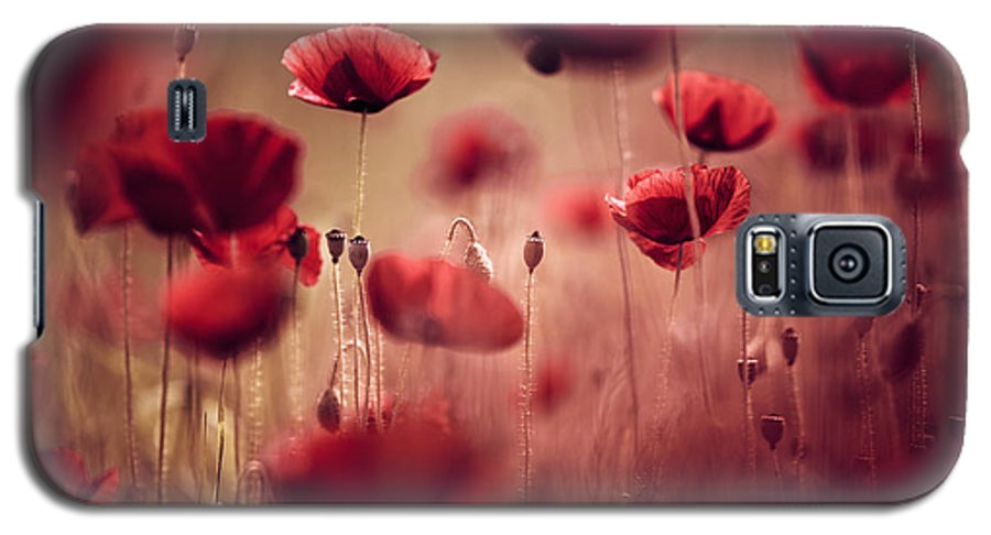 Poppy Galaxy S5 Case featuring the photograph Summer Poppy by Nailia Schwarz