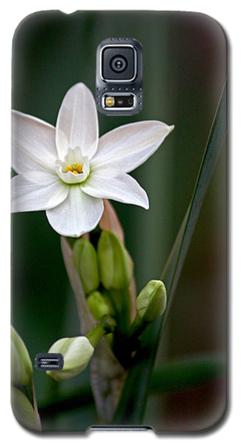 Flower Galaxy S5 Case featuring the photograph Untitled by Keith Walski