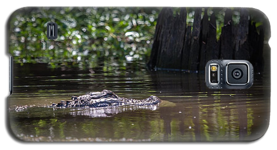 Alligator Galaxy S5 Case featuring the photograph Alligator Swimming In Bayou 2 by Gregory Daley MPSA