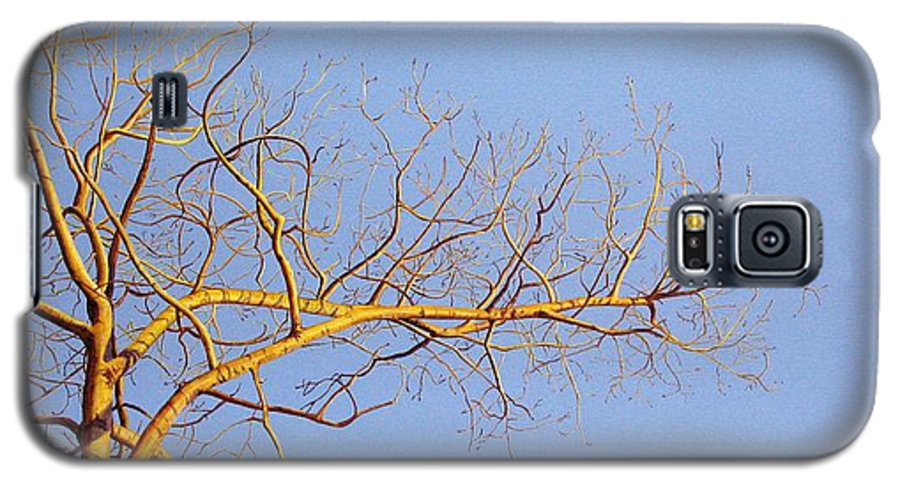 Aspen Painting Galaxy S5 Case featuring the painting Aspen In The Autumn Sun by Elaine Booth-Kallweit
